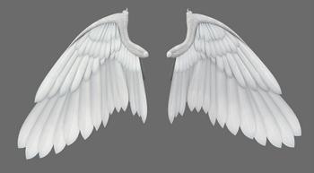 Angels Wings - Wings of Angels - Angel Wings
