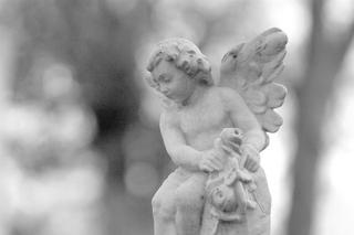 Angel Image - Baby Stone Angel