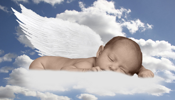Baby Angel Picture