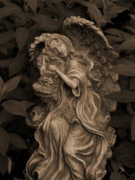 Angel Photo 1
