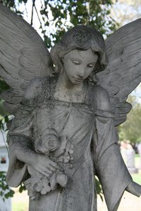Picture of Concrete Angel