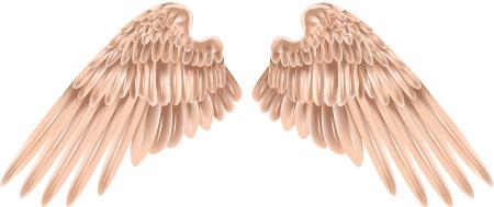 Guardian Angel Wings3